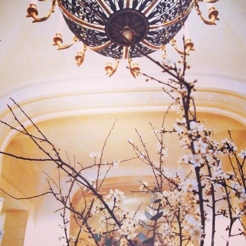 Fleurs de Pecher au Shangri-La Hotel Paris