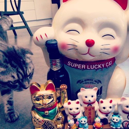 2.2-Lucky-cats-chats-bonheur-maneki-neko