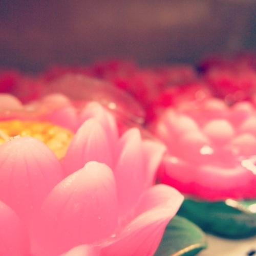 4.2-fleur-lotus-bougie-lotus-flower-candle