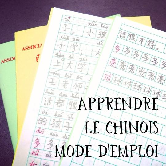 Mes petits carnets de caractères chinois