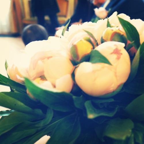 Un beau bouquet de pivoines